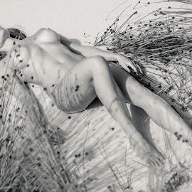 Bushes  by Riaan Swanepoel - Nudes & Boudoir Artistic Nude ( sand, model, dunes, nude, bush, sunshine )
