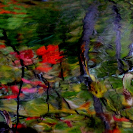 Hats of to Monet... by Robert C. Walker - Abstract Patterns ( water, stream, tress, autumn, reflections, leaves )