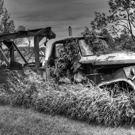 68 Dodge Tow Truck  by Debbie Johnson MacArthur - Black & White Objects & Still Life