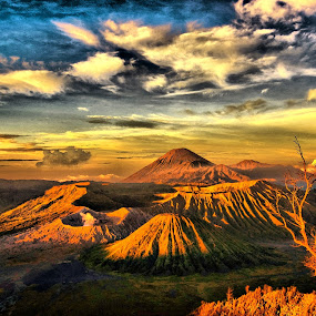 Morning in Bromo by Ari Wibowo - Landscapes Mountains & Hills ( mountains, indonesia, sunset, bromo, chili )