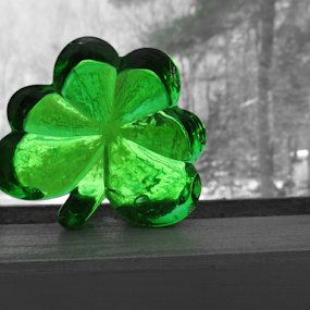 Winter Clover by Liz Pascal - Artistic Objects Glass (  )