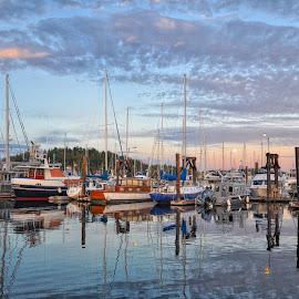 Friday Harbor, Saturday Evening by Chris Gunnell - Transportation Boats ( marine, san juans, sunset, sailboat, friday harbor )