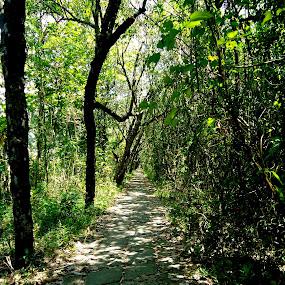 by Devyani Mahajan - City,  Street & Park  City Parks