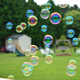 Bubbles by Thomas Shaw - Artistic Objects Other Objects ( yard, grass, colors, green, bubbles, yellow, north carolina, fire pit, bubble, shed, red, clayton, blue, trees, backyard, swing, my house,  )