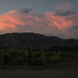 by Martha Irvin - Landscapes Sunsets & Sunrises