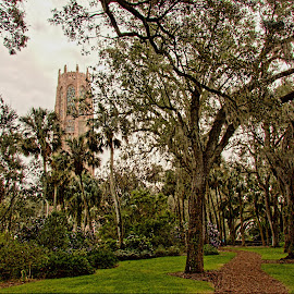 Bok Tower Gardens by Rob Whidden - City,  Street & Park  City Parks
