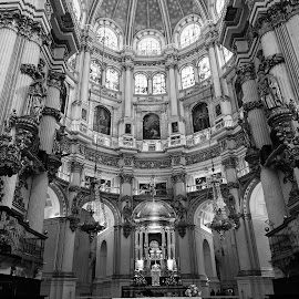 Cathedral, Grenada Spain by Kara Langlois - Novices Only Objects & Still Life ( black and white, grenada, cathedral, architecture, spain )