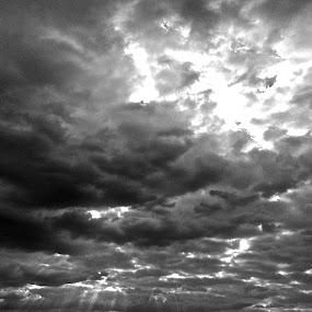 Hurricane Sandy Skyscape by Michelle Baity - Landscapes Cloud Formations ( clouds, blackandwhite, sky, bw, rays, hurricane, skyscape )