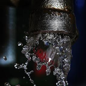 Freeze of Life by Sengkiu Pasaribu - Artistic Objects Still Life ( pwcstilllife-dq, water, splash, water drop  )
