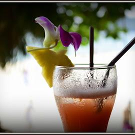 by Gisela Scott - Food & Drink Alcohol & Drinks