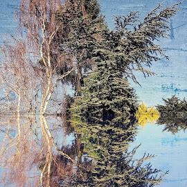 Digref 95 by Michael Moore - Digital Art Things