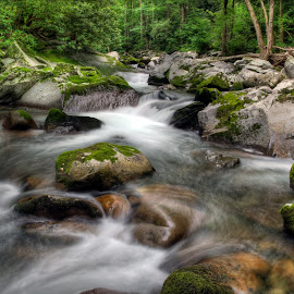 BC-2012 10 by Ross Boyd - Landscapes Waterscapes ( mountains, nc, national parks, streams, creeks )