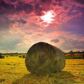 Before Sunset by Marco Bertamé - Landscapes Prairies, Meadows & Fields ( clouds, red, sky, purple, blue, green, sunset, sun, haybale, filed )