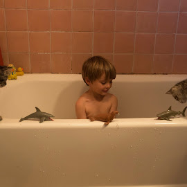 Managers by Chris Seaton - Babies & Children Children Candids ( sentinel, bathing, bath toys, kittens, playful, child )