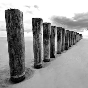 Beach pattern  by Benjamin Arthur - Landscapes Beaches ( wood, benjamin, sea, benjaminarthur.com, beach, tidal, landscape, ameland, photography, netherlands, frisian, island, tides, break, holland, photographer, arthur )