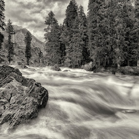 Flowing silk by Ajay Sood - Black & White Landscapes ( mono-tone, b&w, black and white, sood, travel, pahalgam, monotone, landscape, liddar, betaabvalley, nature, ajay, kashmir, b and w, travelure )