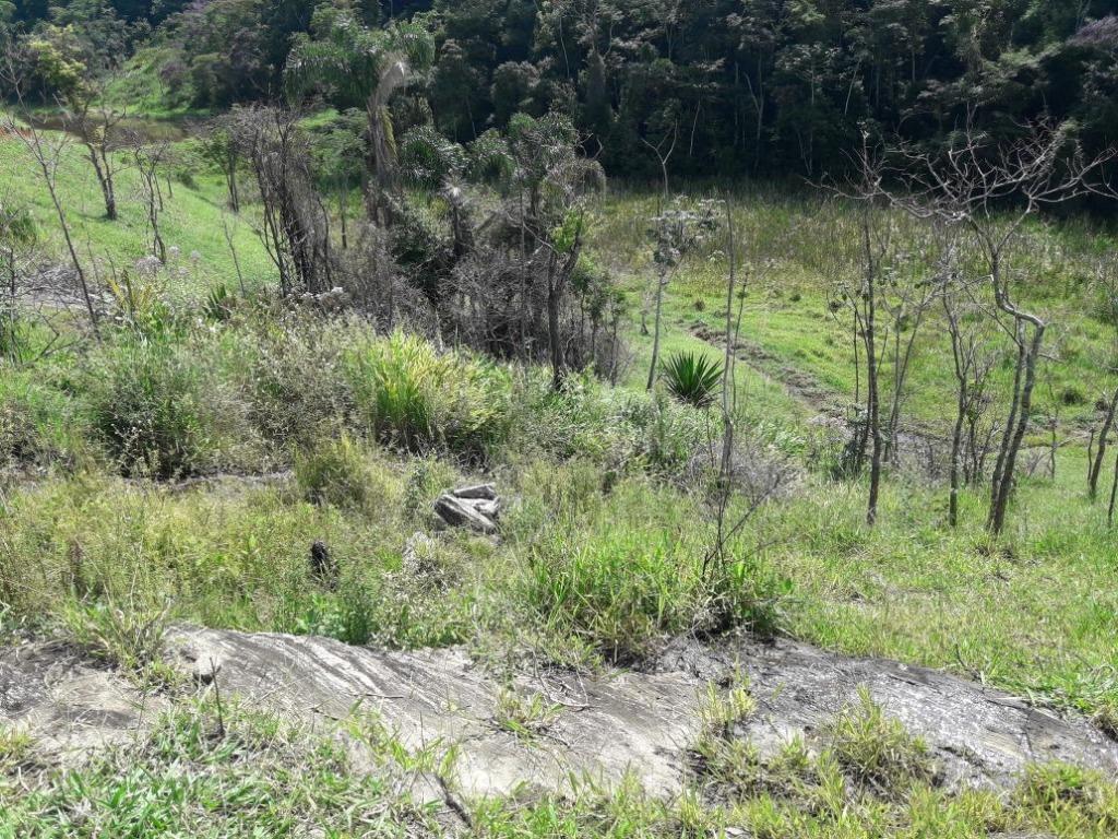 Fazenda / Sítio à venda em Grama, Paraíba do Sul - Foto 2
