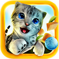 Game Cat Simulator apk for kindle fire