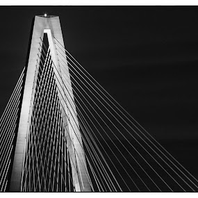 Ravenel Top by Bonnie Davidson - Black & White Buildings & Architecture ( charleston, photograph, suspension bridge, brdge, black & white, white, ravenel bridge, south carolina, black,  )