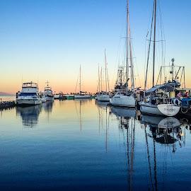 comox marina by Barb Postal - Transportation Boats ( water, bay, sunset, boats, marina, dusk )