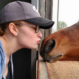 Not sure who is in love with whom? by Sabrina Wilson - Animals Horses