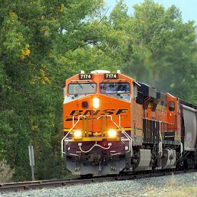 TRAIN by Cynthia Dodd - Novices Only Objects & Still Life ( railway, railroad, train, transportation, steam )