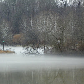 fog on the river by Lori Breitenstine - Nature Up Close Water