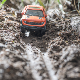 Small red off road car toy in the nature. by Deyan Georgiev - Transportation Automobiles ( car, 4x4, model, wheel, automobile, road, race, miniature, adventure, mud, nature, toy, drive, dirty, jorney, speed, engine, grass, offroad, dirt road, track, play, sport, off-road, tire, rally, buggy, off, auto, fast, small )