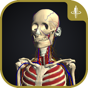 Download teamLabBody APK