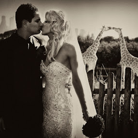 Bride and groom and giraffes   by Kira Likhterova - Wedding Other