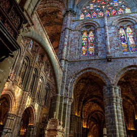 interior catedral de Avila by Roberto Gonzalo Romero - Buildings & Architecture Places of Worship ( interior, cathedral, avila, catedral )