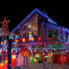 Rocky Mtn. House by Elizabeth Donovan-Jenkins - City,  Street & Park  Neighborhoods ( seasonal, lighting, joy, christmas, noel, mood factory, color, moods, colorful, light, bulbs, mood-lites )
