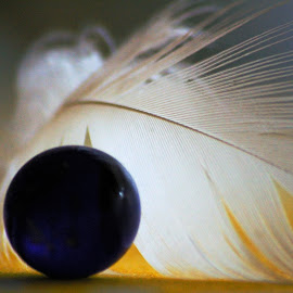 Gleam by Anuška Vončina - Abstract Light Painting ( abstract, interior, ball, feather, light )