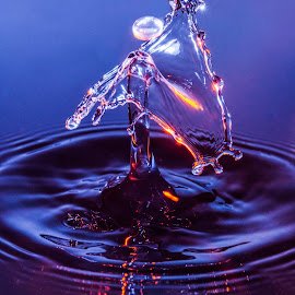 Water Drop with purple and orange gels by Andrew Photos - Abstract Water Drops & Splashes ( water, orange, purple, splash, blue, droplet, ripples )