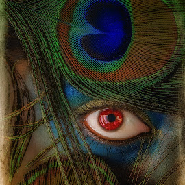 Wild Eye by Tabish Gill - People Body Parts ( wild, red, feather, peacock, eye,  )