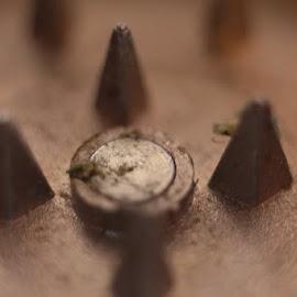 Spikes by Frank Fronteddu - Abstract Macro ( up close, macro, small things made big, macro photography, close up )