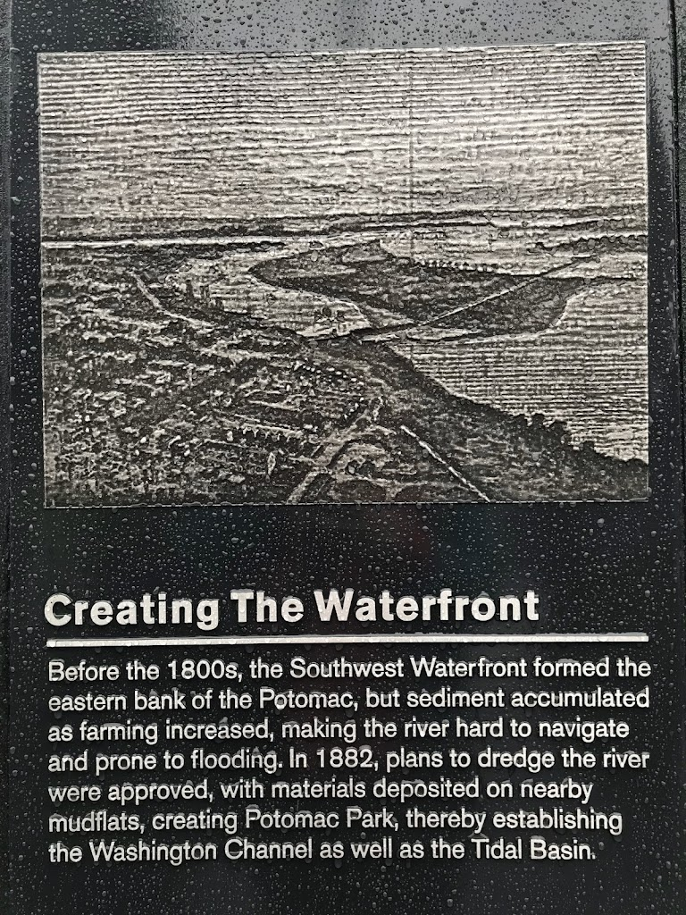 Creating The WaterfrontBefore the 1800s, the Southwest Waterfront formed the eastern bank of the Potomac, but sediment accumulated as farming increased, making the river hard to navigate and prone to ...