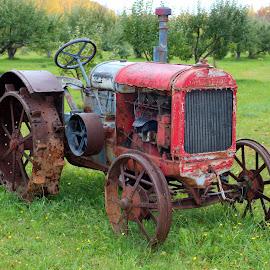 Old Harvest Tractor by Robert C. Walker - Transportation Other ( farm, old, harvest, antique, tractor )