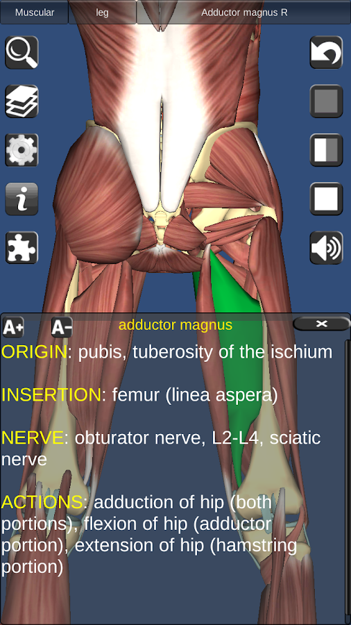 3D Anatomy Screenshot 5
