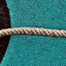 Line by Eirin Hansen - Abstract Macro