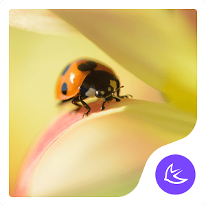 Flowers and ladybugs APUS launcher theme for PC-Windows 7,8,10 and Mac