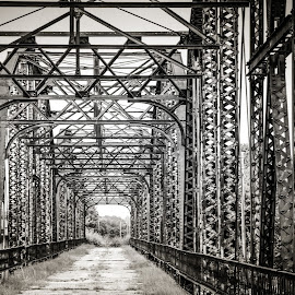 Old Bridge by Jennifer  Loper  - Black & White Buildings & Architecture ( footbridge, steel, old, unused, bridge )