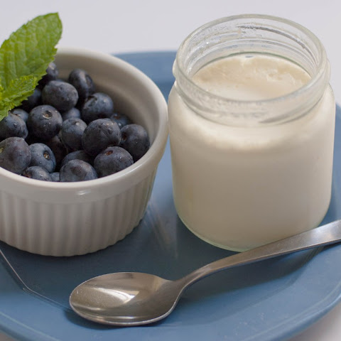 Moroccan Raibi Homemade Yogurt