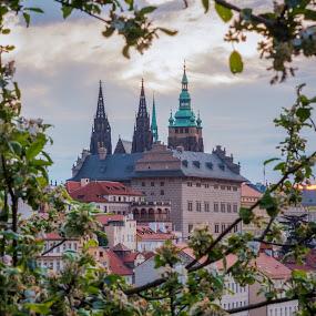 May in the Prague by Robert Grim - City,  Street & Park  Historic Districts ( nikon, czech republic, may, city, praha, prague, europe )