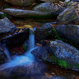 Alder Creek 3 by Danny Bruza - Nature Up Close Water ( alder creek, alpine village, water )
