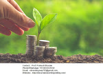 Top Class Seed Funding Consultation Services at Indore from eBranding India