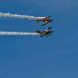 High Speed Symmetry  by Wendy Meehan - Transportation Airplanes ( blue sky, airplanes, biplanes, stunt, contrail )