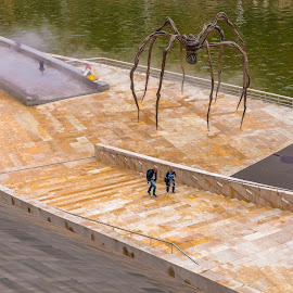 Guggenheim, Bilbao by Roberto Gonzalo Romero - Buildings & Architecture Statues & Monuments ( bilbao, guggenheim, spider )