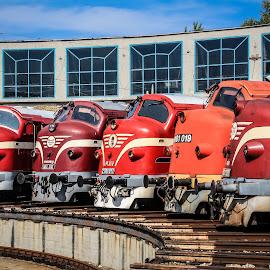 Nohab by Nagy Attila - Transportation Trains ( 123 )