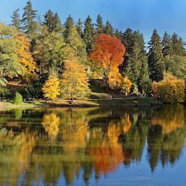 Colors of automn by Michaela Firešová - Landscapes Waterscapes ( colour, reflection, waterscape, trees, lake, leaves, automn )